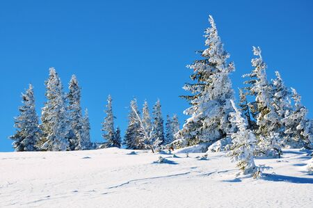 Winter landscape in mountains of Austria photo