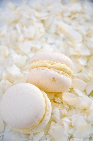 Coconut Macaroons photo