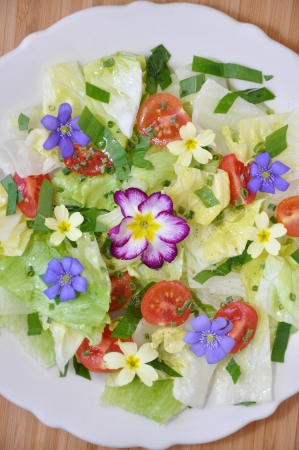 Spring Salad with blossoms photo