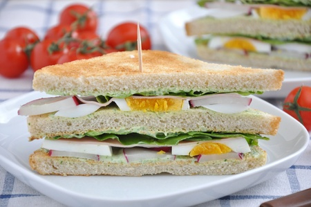 Sandwich Stock Photo - 19243045