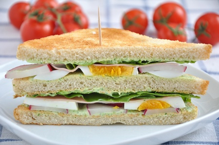 Sandwich Stock Photo - 19243050