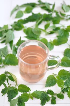 Cup of herbal tea Stock Photo - 19395890