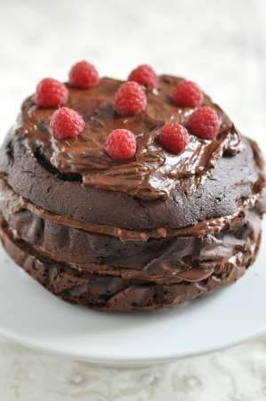 Chocolate Cake with raspberries Stock Photo - 19396138