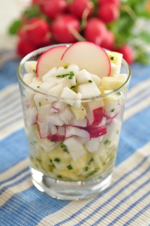 Healthy Radish Salad photo