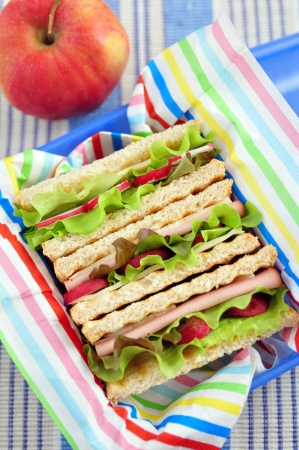 Sandwich in a lunchbox photo