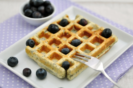 Poppy Seed Waffles with Vanilla Ice Cream and Blueberries photo