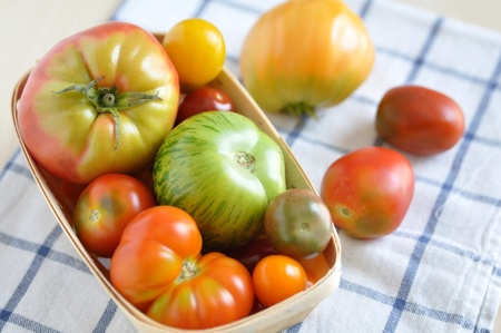 Colorful Tomatoes photo