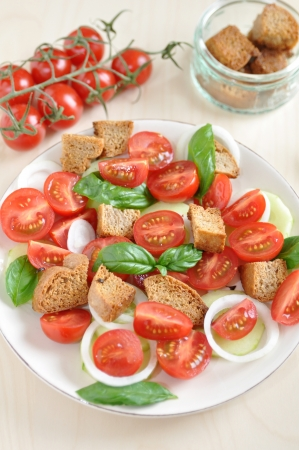Panzanella - Italian Bread Salad photo