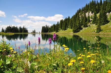 Mountain Lake in Austria Stock Photo