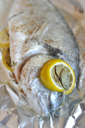 Gilthead Seabream photo
