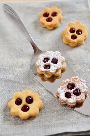 Linzer Cookies Stock Photo - 21691405