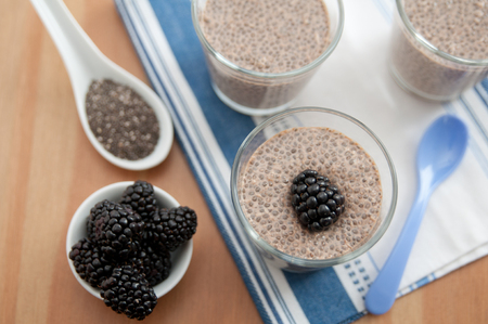 summer pudding: Chia Seeds Pudding with blueberries