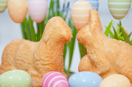 Easter Bunny Cake photo