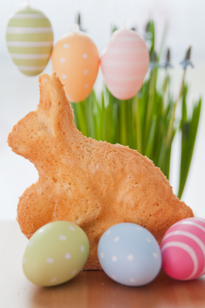 Easter Bunny Cake Stock Photo - 26876380