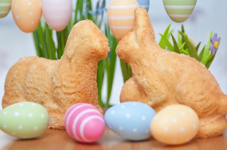 Easter Bunny Cake Stock Photo - 26876326
