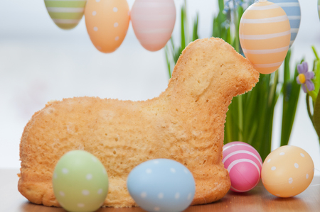 Easter Bunny Cake photo