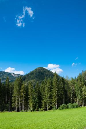 マリアツェル、オーストリアの山