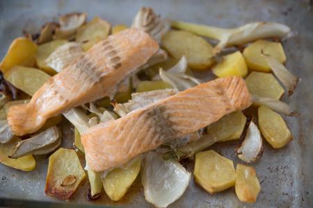 downloaded: Salmon Stock Photo