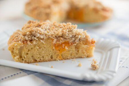slivers: Apricot Cake Stock Photo