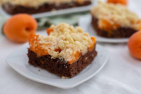 Chocolate Apricot Cake Stock fotó