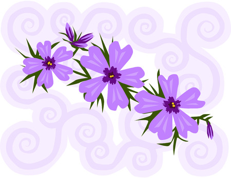 Vector illustration of purple phlox flowers with a swirly background.