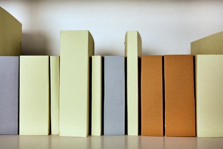 Die Wurzeln von Büchern sind auf dem Regalhintergrund leer Standard-Bild - 80951307