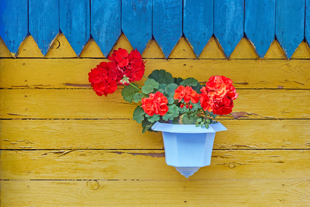 hanging basket with pink flower plants on the wooden wall, home decorative