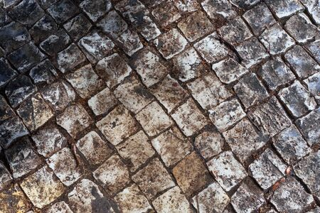 paving slabs wet on a sunny day