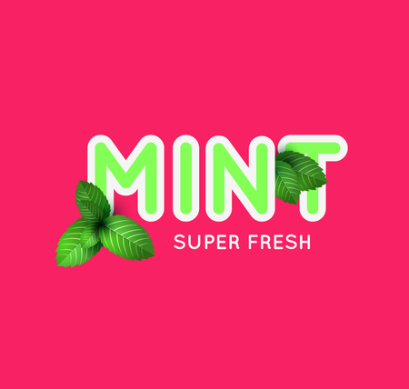 plain background: Leaf of fresh mint. Fresh mint banner design. Bunch of mint vector object. Green mint with lettering. Mint cocktail. Mint for cooking. Illustration