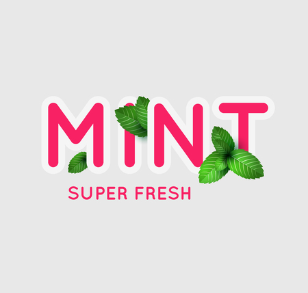 mint: Leaf of fresh mint. Fresh mint banner design. Bunch of mint vector object. Green mint with lettering. Mint cocktail. Mint for cooking. Illustration