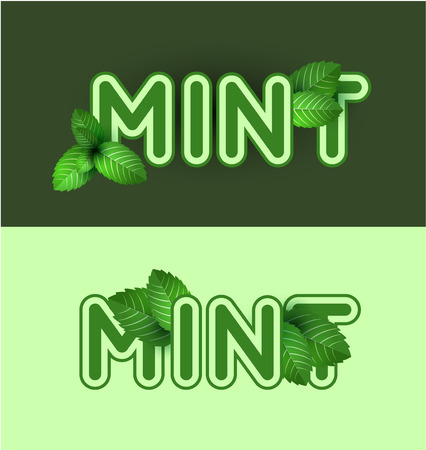 mint leaves: Leaf of fresh mint. Fresh mint banner design. Bunch of mint vector object. Green mint with lettering. Mint cocktail. Mint for cooking. Illustration