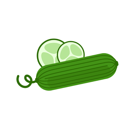 cucumber salad: Fresh cucumber for vegetable salad. Green cucumber from the garden. Illustration
