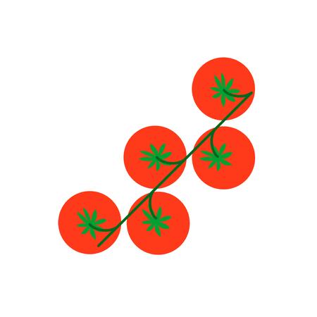 tomate cherry: tomate cereza con hoja ilustración vectorial rúcula. Top tomate cereza vista sobre fondo blanco.