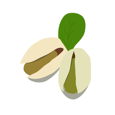 Pistachio vector illustration. Pistachio set icon. Pistachio on white background. Product in grocery store. Healthy vegetarian food Illustration