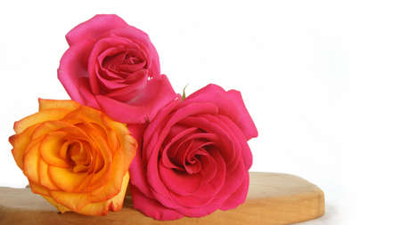 orange rose: Red roses and orange rose on wooden table on white background