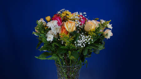 glass vase: Bouquet of flowers in glass vase on dark blue background Stock Photo