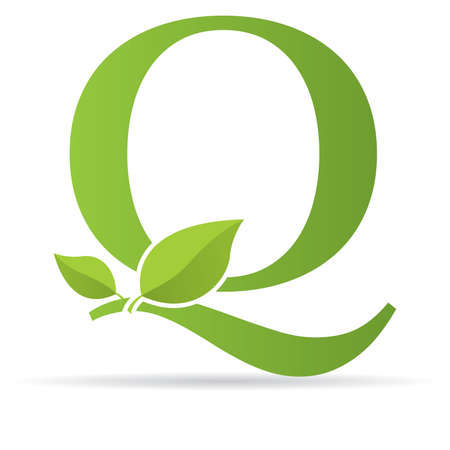 Logo with letter Q of green color decorated with green leaves - Vector image Çizim