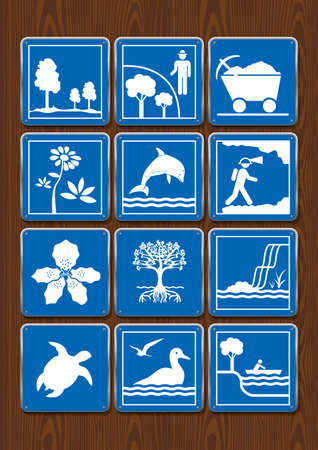 Set icons of protected area, mining, flower, dolphin, geology, orchid, mangrove, waterfall, turtle, seabirds, navigable river. Icons in blue color on wooden background. Vector image.