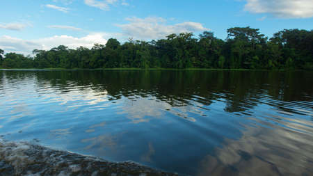 Trees on the shore of the lagoon reflected in the water in the Perla park on the outskirts of the city of Nueva Loja, also known as Lago Agrio Stock Photo