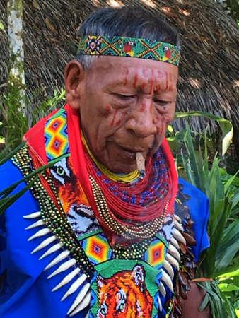 Nueva Loja, Sucumbios / Ecuador - September 2 2020: Elderly indigenous shaman of Cofan nationality smoking tobacco while performing a healing ritual in the Amazon rainforest
