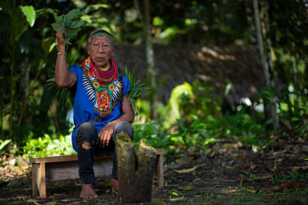 Nueva Loja, Sucumbios / Ecuador - September 2 2020: Old shaman of the Cofan nationality sitting on a small wooden bench performing a healing ritual in the middle of the Amazon jungle Редакционное