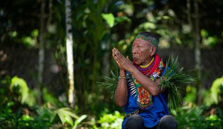 Nueva Loja, Sucumbios / Ecuador - September 2 2020: Elderly indigenous shaman of Cofan nationality praying with his hands joined  in the Amazon rainforest Редакционное