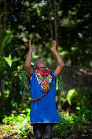 Nueva Loja, Sucumbios / Ecuador - September 2 2020: Elderly indigenous shaman of Cofan nationality performing a healing ritual with his arms raised in the Amazon rainforest