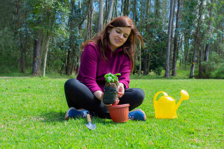 Beautiful Hispanic young woman placing a small plant inside a pot in her home garden during the morning Фото со стока