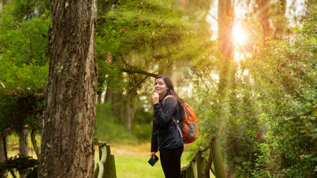 Beautiful Hispanic woman dressed in black with backpack walking alone on a forest path with sun rays between the trees during the morning Фото со стока