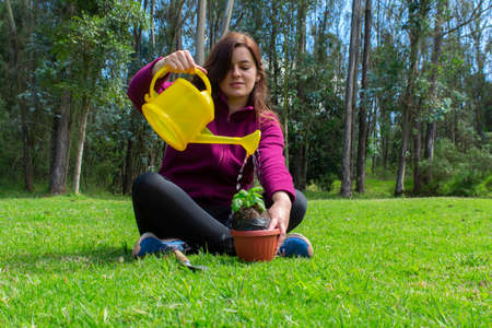 Beautiful Hispanic young woman watering water on a small plant inside a pot in her home garden during the morning Фото со стока