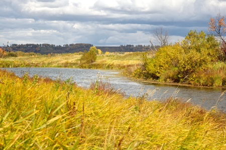 wilds: Autumn yellow sun lit grass on the river bank in the wilds under the cloudy sky
