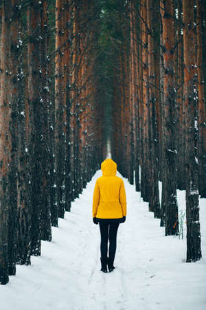 Road covered in snow, pine pine tree alley in winter time, man in yellow raincoat standing in the middle during snowfall