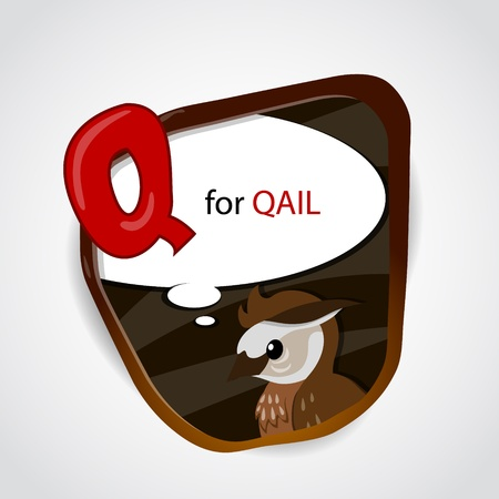 phonetics: The English alphabet of animal theme  Q for Quail  Vector illustration Illustration