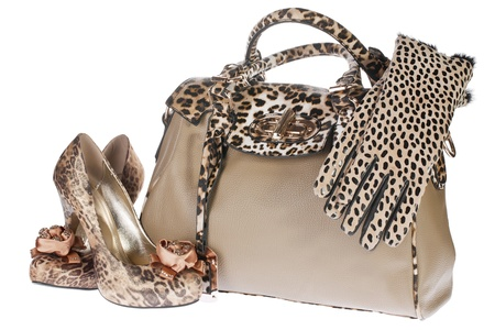heel strap: Leopard bag, shoes and gloves, isolated on white background